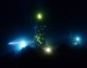 12/31 大晦日に年1度のナイトダイビング(海洋公園&富戸)&年越大宴会が開催!!