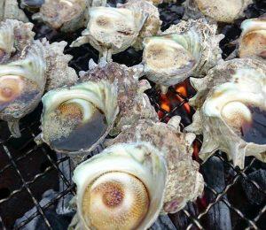 豪華サザエのつぼ焼き海鮮BBQ開催日程!!