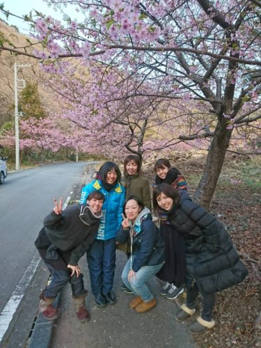 2/21 井田で桜~