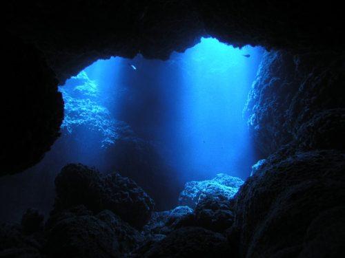 西表島オガン狙いツアー 2020年6月25日(木)~28日(日)3泊4日