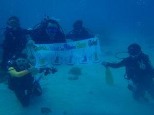 Dolphinwave 世界遺産の島♪屋久島ツアー2018